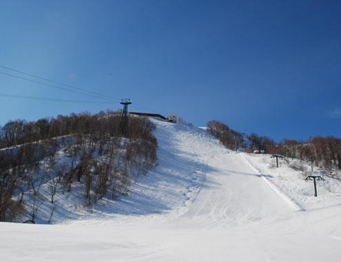 小樽天狗山滑雪場雪道介紹